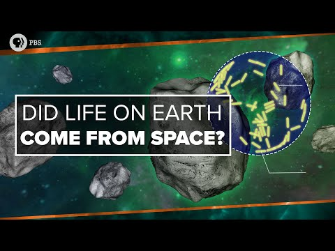 Did Life on Earth Come from Space? | Space Time