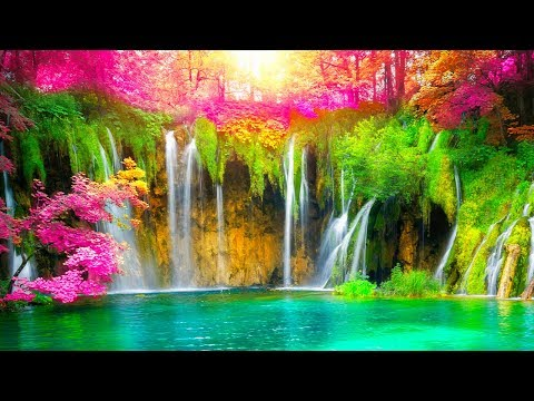 Relaxing Music 24/7, Sleep Music, Meditation, Healing, Zen, Calming Mu…