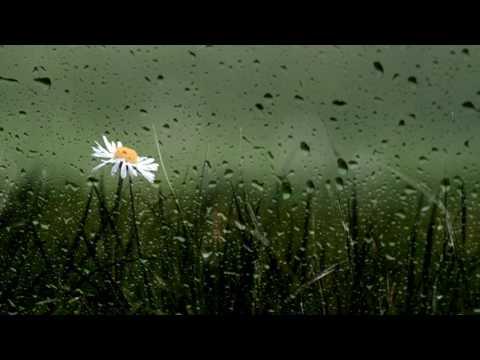 Kiss The Rain Piano | Free Ringtone Downloads