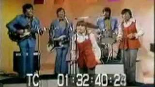 Silver Threads And Golden Needles - The Cowsills