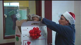 Charleston Animal Society's Home for the Holidays program