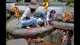 【海外の反応】とある日本の光景に外国人が衝撃!! 清潔な日本ならではの風景に世界が驚愕!! 海外「日本でしかありえない」【動画のカンヅメ】