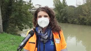 Intervento di bonifica sul letto del fiume Arno tra Rignano e Reggello