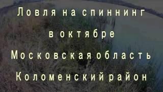 рыбалка на спиннинг в московской области(рыбалка на спиннинг в московской области Коломенский район, середина октября. Ловля проходила на одном..., 2016-10-30T15:16:13.000Z)
