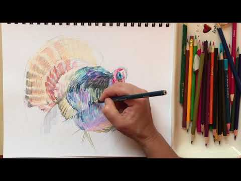 """Colored pencil drawing """" A Turkey,"""" art lesson with Natalka Barvinok"""
