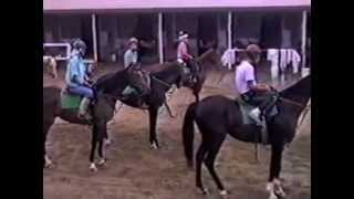 Whittingham Stable at San Luis Rey Downs, with Bob St Cyr 1986