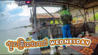 River Fishing At Wednesday Restaurant (ស្ទូចត្រីនៅហាង Wednesday) | Fishing Vlog #13