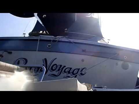 Bon Voyage 01/11/19