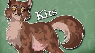 Medicine Cats SHOULD Have Kits | Warrior Cats