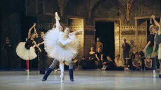 世界最古にして最高峰のバレエ団、パリ・オペラ座の伝統を次の世代に繋...