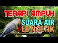 Terapi Suara Air Dan Lovebird Ngetik Kicau Mania(.mp3 .mp4) Mp3 - Mp4 Download