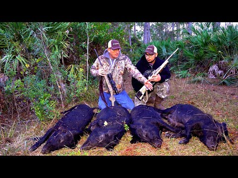 Wild Boar Ambush! 4 Giant Hogs!!!{Catch Clean Cook} Filipino Style