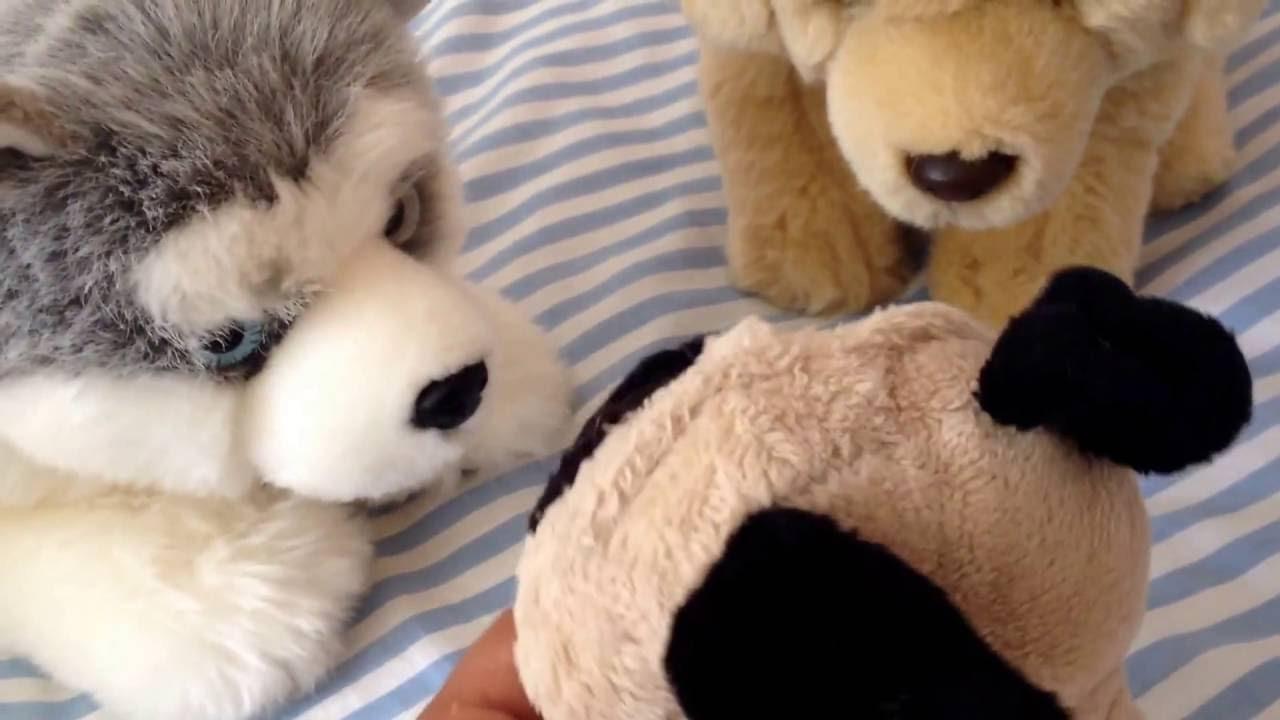 Download Webkinz wolf pack ep4