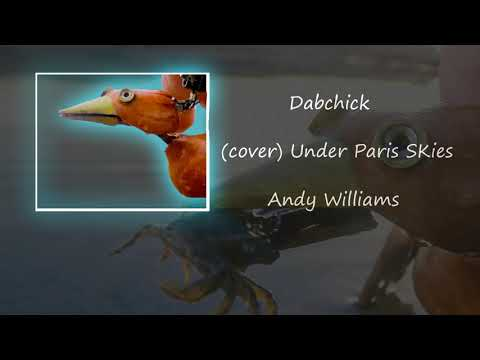 Under Paris Skies (cover) - Dabchick