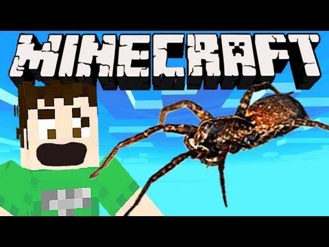 Minecraft - REAL LIFE SPIDER