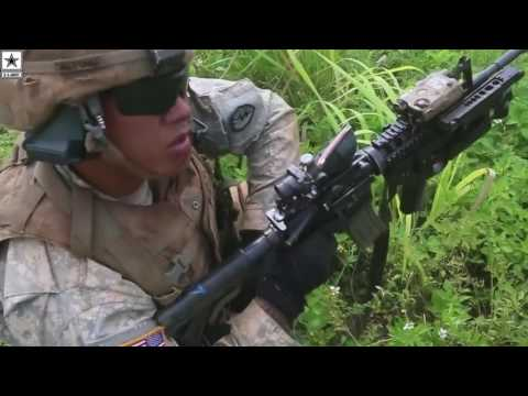 Military   Army 25th Infantry Division Conducting Large-scale Exercise