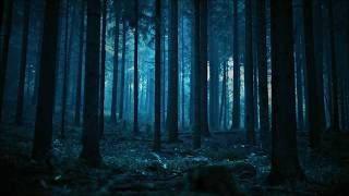 Forest lyrics (By Twenty one pilots)
