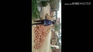 Mathiya icc wold cub mathiya cricket
