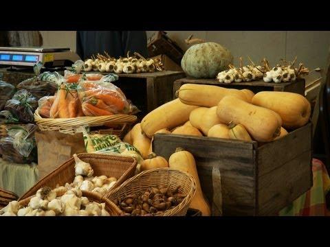 Expert Tips for Safe Home Food Storage
