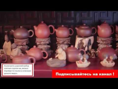 Самый полезный чай - Здоровое питание - Zdravo