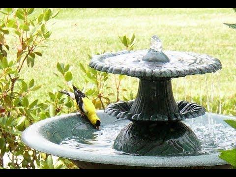 Solar Bird Fountain