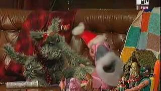 MTV Pets (Ita) - 1x01 - Christmas