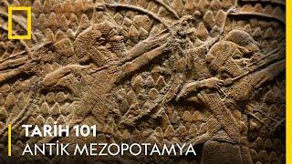 Tarih 101