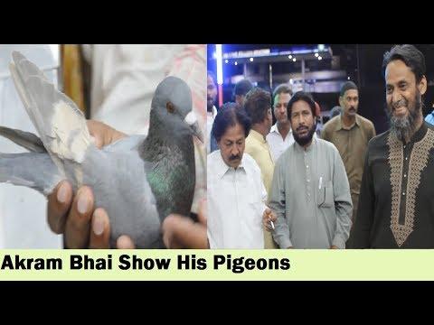 Karachi Pigeon Breeders Association - Kabootar Ustadon Ki Bethak - 4th Video