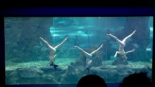 俄罗斯美女的水下芭蕾舞 / Underwater ballet of Russian beauties