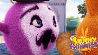 SUNNY BUNNIES - EL CROISSANT | Dibujos animados divertidos para niños | WildBrain