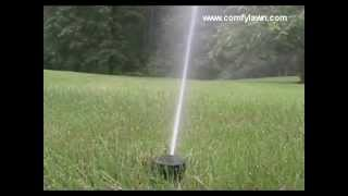 Best Way to Water the Lawn and Use a Sprinkler