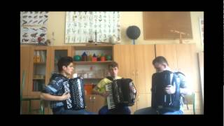 One Direction - One Way Or Another (Crazy Accordion Trio Cover)