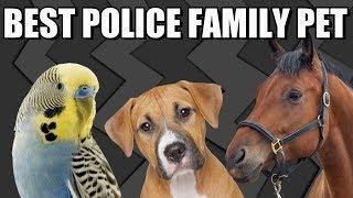 WE GOT A PET!!