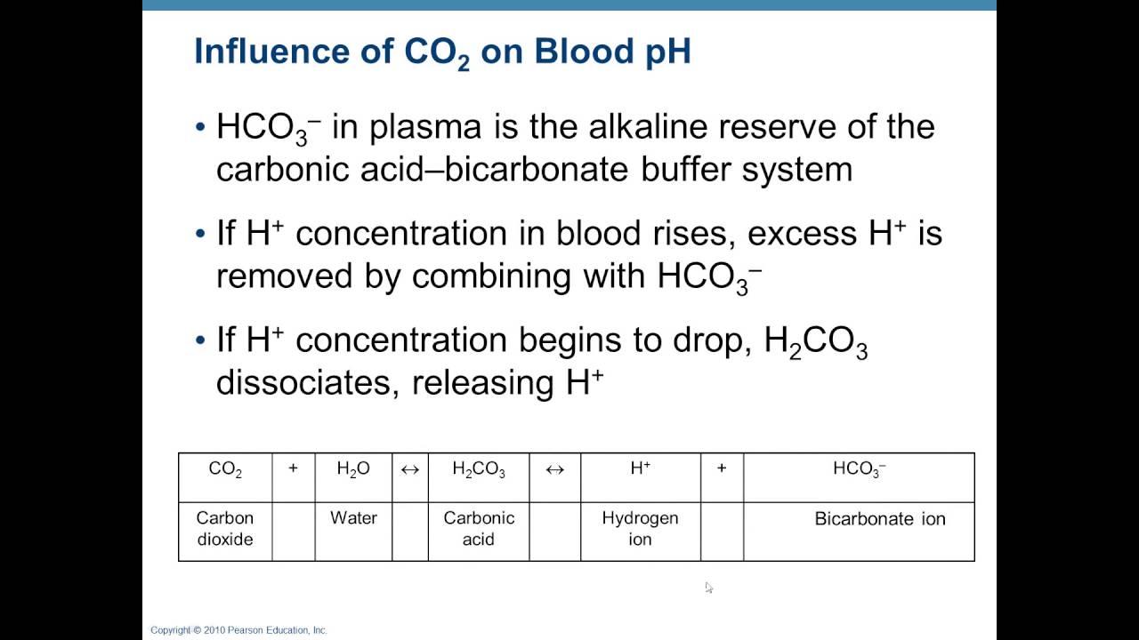 Chapter 22- Respiratory 5 - Body Fluid pH and Acidosis - YouTube