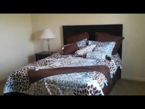 The Lux Apartments in Louisville, KY - ForRent.com