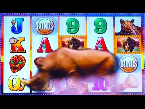 Pnxbet online casino