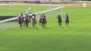 Vidéo de la course PMU PRIX DE L'HIPPODROME DE CASTERA-VERDUZAN