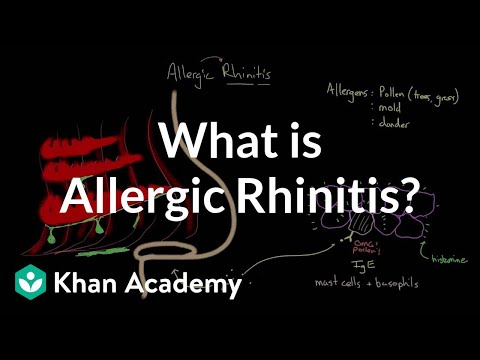 What is allergic rhinitis? | Respiratory system diseases | NCLEX-RN | Khan Academy
