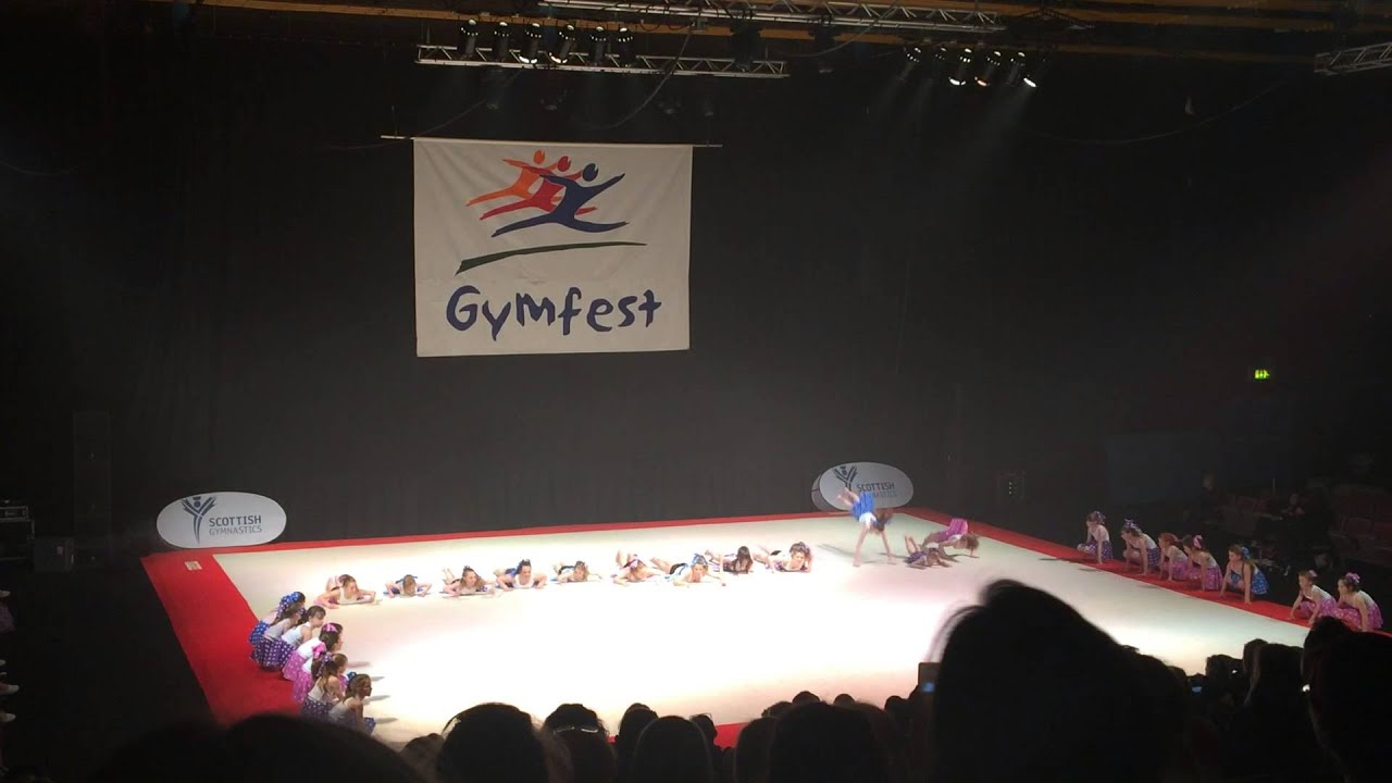 Tay Valley Gymfest May 2017