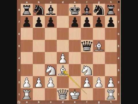 Chess Basics: Queen Overview