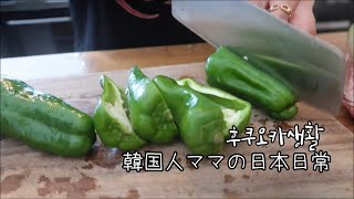 캠핑용품사고 토마토피망덮밥 해먹은 후쿠오카일상