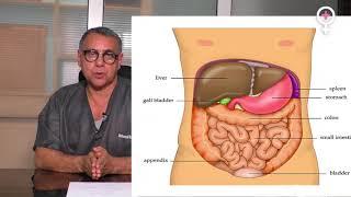 Les douleurs abdominales chez la femme  آلام البطن عند المرأة