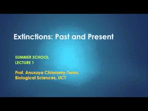 EXTINCTIONS: PAST AND PRESENT (Lecture 1 of 5) Prof Anusuya Chinsamy-Turan