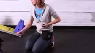 How To Teach A Pomeranian Tricks