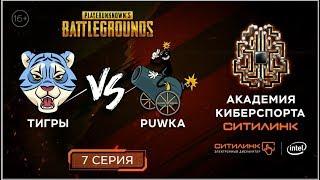 💥ТИГРЫ vs PUWKA! Реалити-шоу по мотивам PUBG I 7 СЕРИЯ I Академия киберспорта Ситилинк