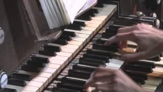 Benjamin Alard   Souvigny   Bach Goldberg   V16