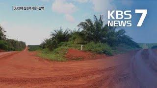 """""""열대림 파괴""""…인도네시아 팜유 사업 포스코 진정 / KBS뉴스(News)"""