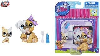 Littlest Pet Shop Bobble Head Favourite Pets Bulldog & Baby Toy Review, Hasbro