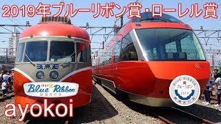 2019年ブルーリボン賞小田急GSE ローレル賞相鉄20000系・ひえい