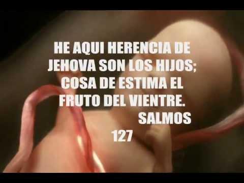 Canción para mi bebe - Yo te prometo - Alexis Peña - YouTube